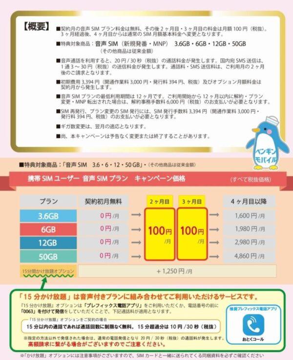 ペ ン ギ ン 祭 り 【ワンコインで50GB】