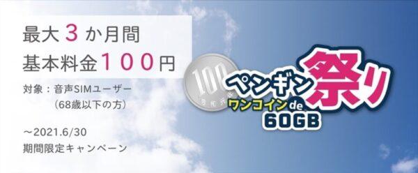 ペンギン祭りワンコインde60GB